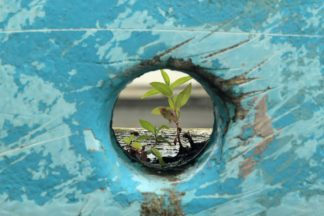 Curso breve – Resiliencia Espiritual desde el Arte